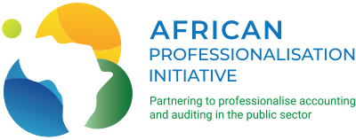 African Professionalisation Initiative